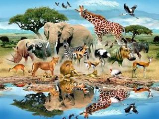 رکوردشکنهاي حيوانات