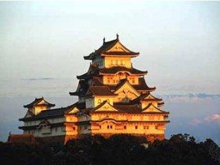قصر هيمه چی,درنای سفيد ژاپن