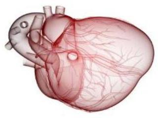 استفاده از ضربان قلب به عنوان کليد رمزگشا