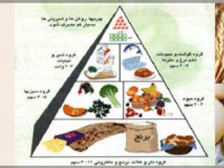 آلرژی کودکان ايرانی به 4 ماده غذايی