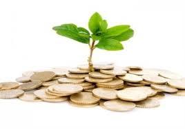 روش سازماندهی یک تیم مدیریت سرمایه